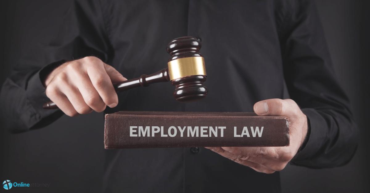 Employment lawyers Tampa FL