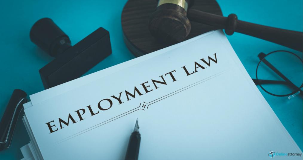 Federal Employment Lawyer